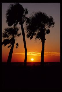 thumbnail_photo3